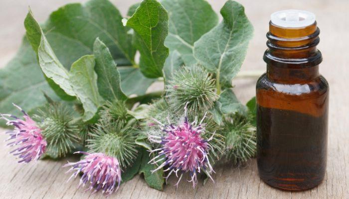 Репейное масло для лица: применение