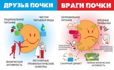 Рекомендации по питанию при воспалении почек