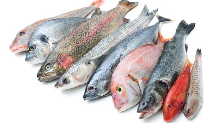 Симптомы аллергии на рыбу, а также на какую чаще всего бывает реакция у взрослых и детей?