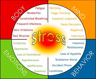 Возникновение стресса с точки зрения холизма