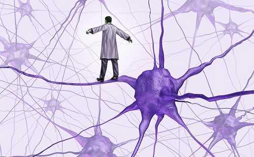 Нейротрансплантология