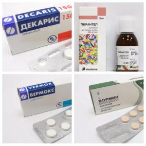 Виды лекарств от глистов