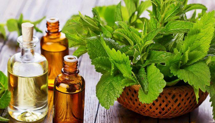 Причины и лечение трещин на губах: лучшие и самые эффективные средства