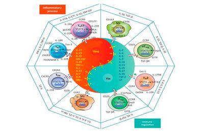 Цитокины при онкологии и вирусах