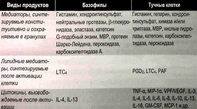 Основные регуляторные продукты, образуемые базофилами и тучными клетками