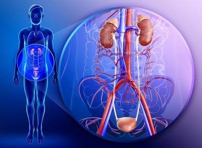 Цифорал антибиотик от цистита и пиелонефрита – показания к применению фото