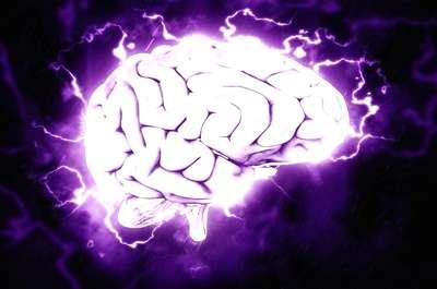 Нейротрансплантация (нейротрансплантология)