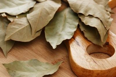 Можно ли добавлять лавровый лист в пищу? фото