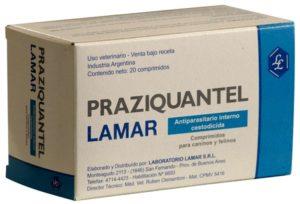 таблетки Празиквантел (Бильтрицид) для людей - как принимать, дозировка, цена, аналоги, отзывы