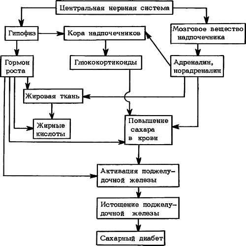 Механизмы развития сахарного диабета при стрессе (схема)