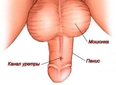 Симптомы и виды нарушения