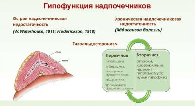 Гипофункция