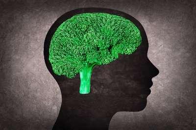 Энцефалопатия головного мозга у пожилых: лечение